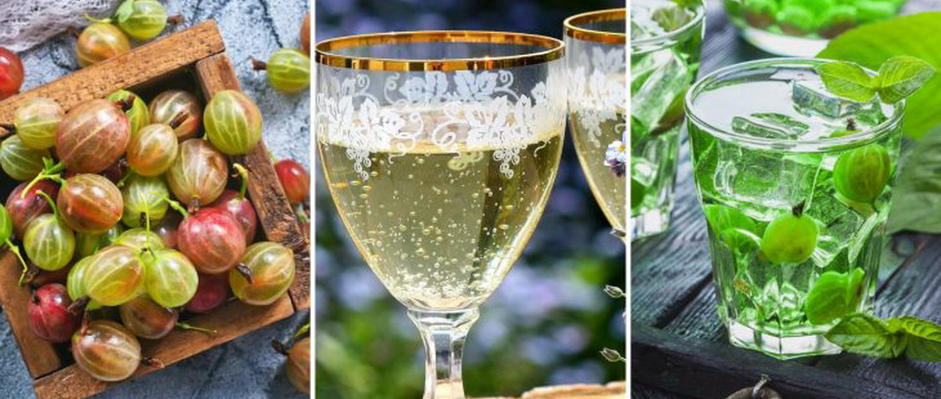 Рецепты шампанского из крыжовника