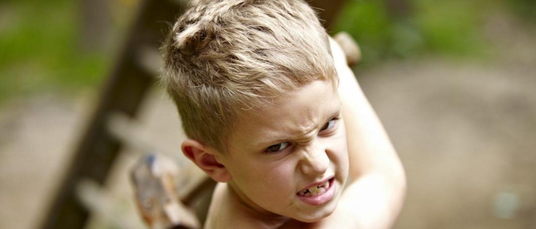 Проблема детской жестокости